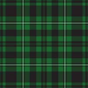 HTV Green Plaid