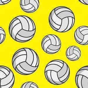 HTV Volleyballs on Yellow