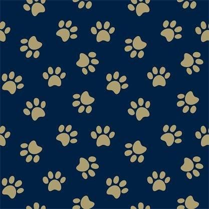 HTV Navy and Gold Paw Prints