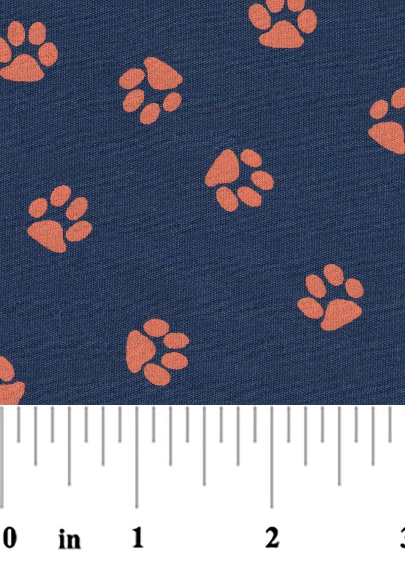 Orange Paws on Navy