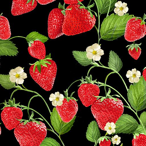 Strawberry Fields Forever Stawberry Patch