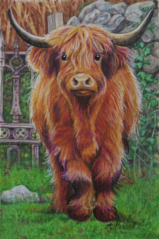 HIGHLAND COW by artist Annette Hassell