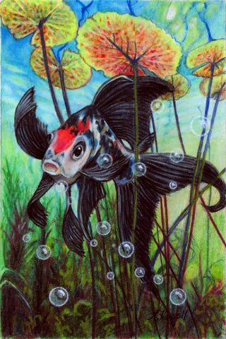 KOI by artist Annette Hassell