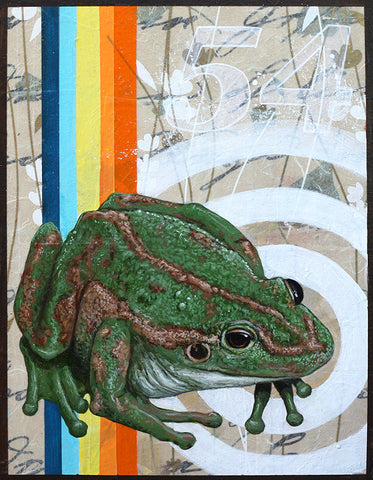 La rana #54 (The Frog) by artist Joshua Coffy