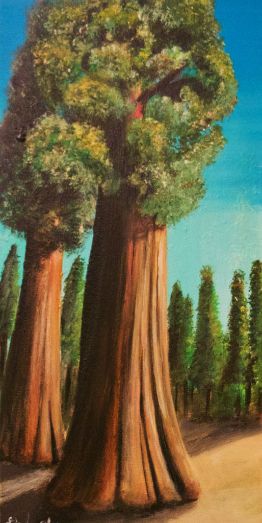 OLD GROWTH by artist Douglas Alvarez