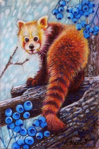 RED PANDA by artist Annette Hassell