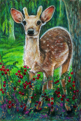 SIKA DEER by artist Annette Hassell