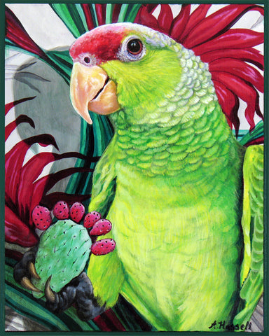 EL COTORRO #24 (The Parrot) by artist Annette Hassell