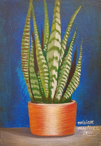 URBAN JUNGLE 3 (snake plant) by artist Miriam Martinez