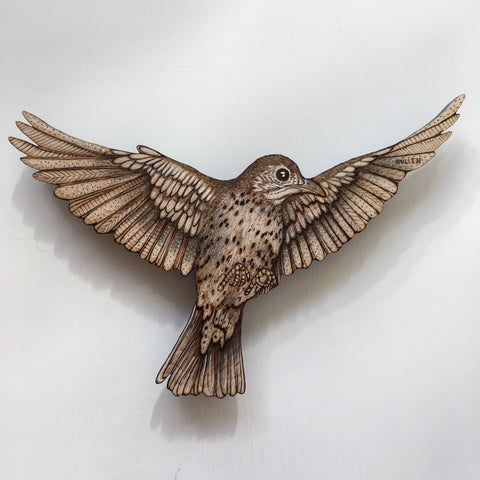 WOOD THRUSH 3 by artist Samantha Jane Mullen