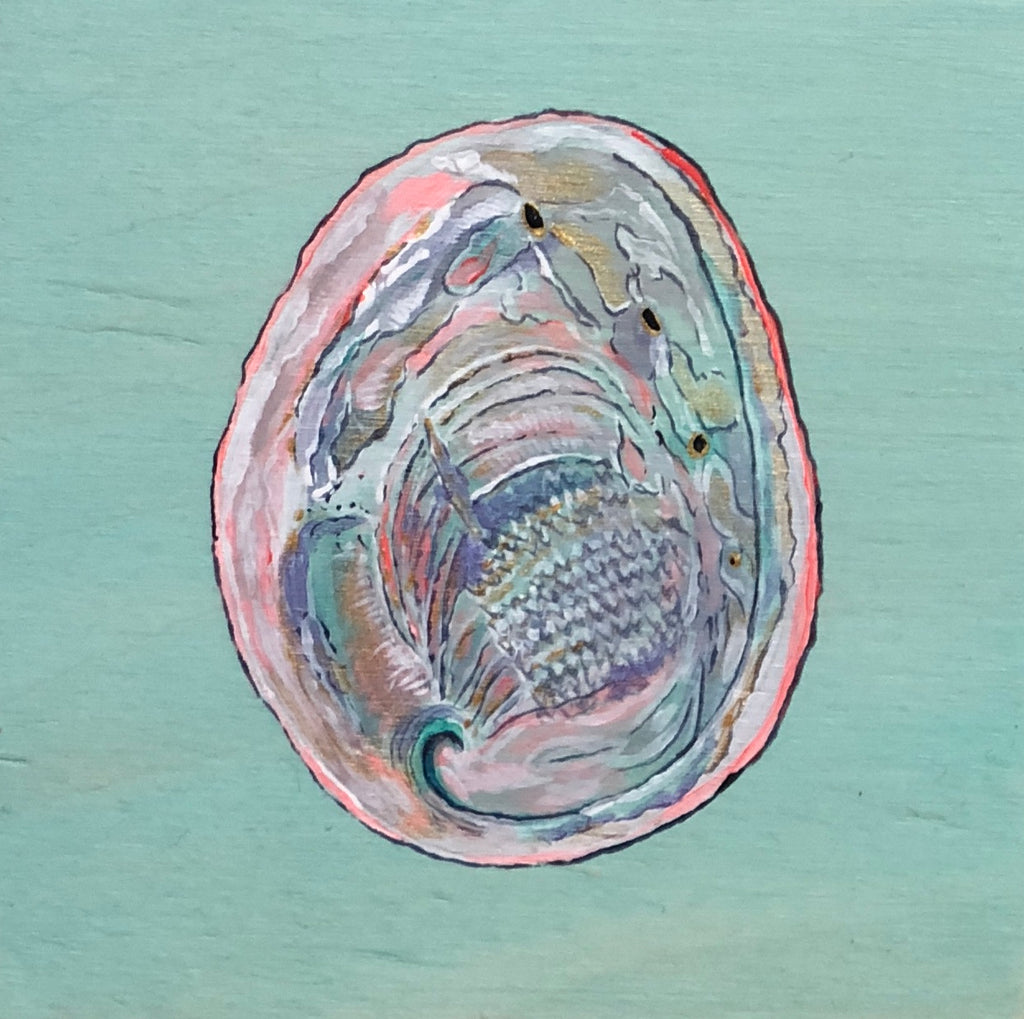 ABALONE by artist Cat Sommer