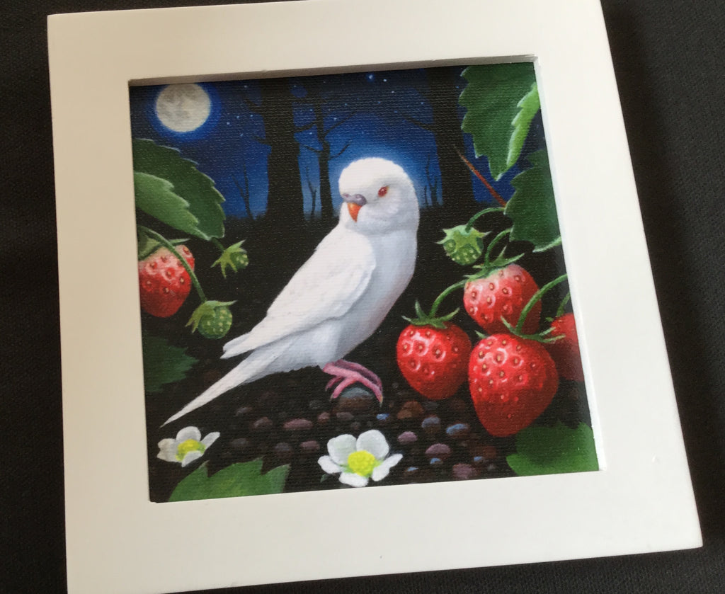 PEDRO'S STRAWBERRY NIGHT Giclee Print by artist Olga Ponomarenko