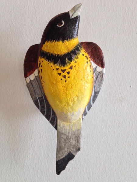 Yellow-breasted Bunting by artist Ulla Anobile