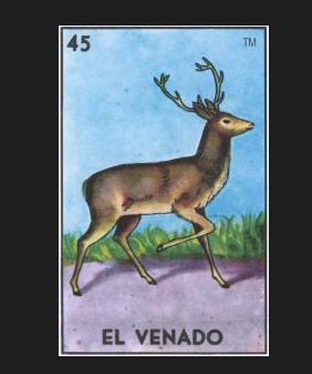 #45 EL VENADO (The Deer) by artist Lena Sayadian