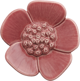 Ribbonwood Flower - Small
