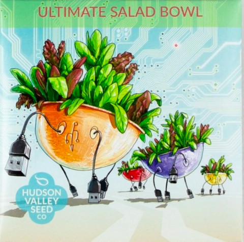 Ultimate Salad Bowl Vegetable Seeds