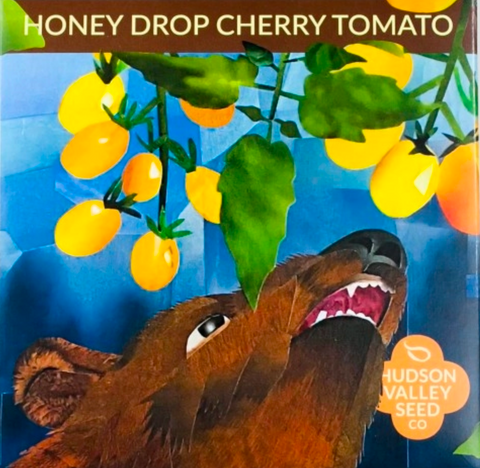 Honey Drop Cherry Tomato Vegetable Seeds