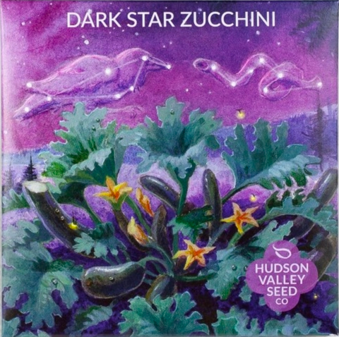 Dark Star Zucchini Vegetable Seeds