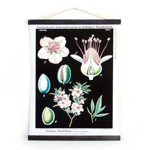 Vintage Botanical Wall Hanging - Gather Goods Co - Raleigh, NC