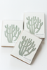 Cactus, Senita Blank Card Boxed Set
