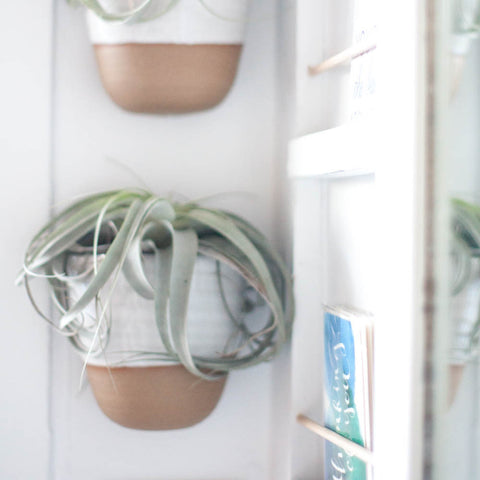 Ceramic Wall Planters - Gather Goods Co - Raleigh, NC