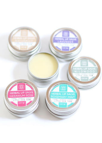 Herbal Lip Salve - Gather Goods Co - Raleigh, NC