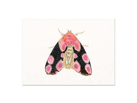 Moth Art Print - Gather Goods Co - Raleigh, NC