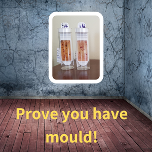 Do you need to prove you have mould?