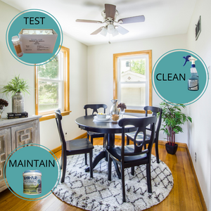 How to Test, Clean and Maintain your home free of mould