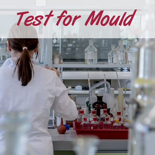 Test for mould
