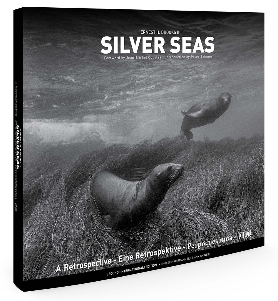 Silver Seas by Ernest H. Brooks II
