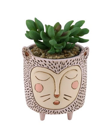 Baby Planter / Baby Purr