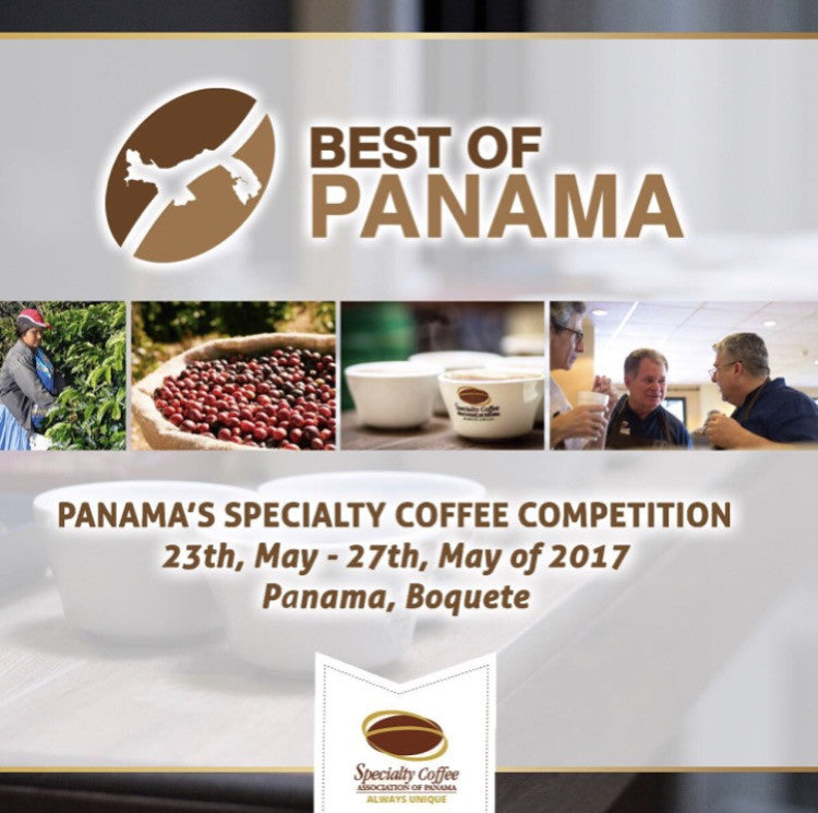 Best Of Panama 2017