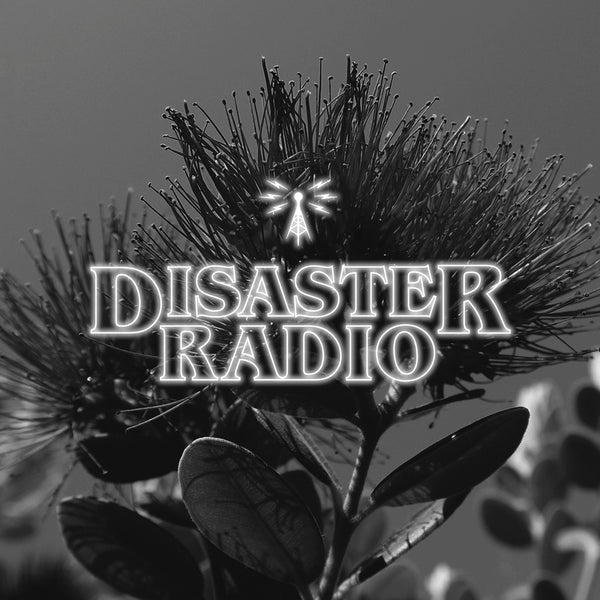 Disaster Radio - Kiwi Summer
