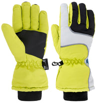 Men's 3M Thinsulate Waterproof Gloves