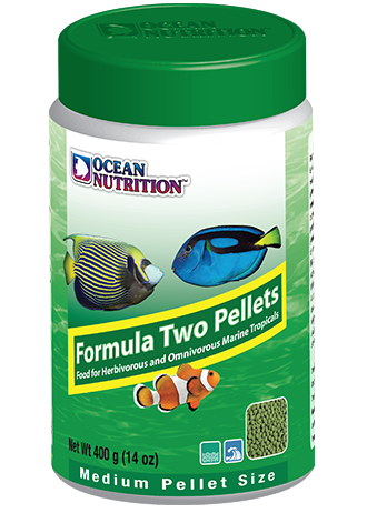 Ocean Nutrition Formula Two Pellet Medium 400g