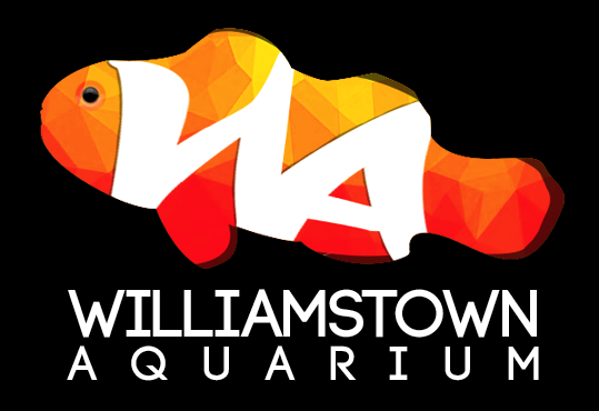 Williamstown Aquarium