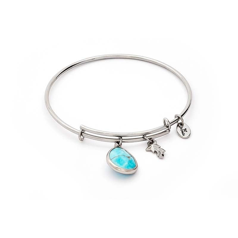 Chrysalis Turquoise Howlite December Silver Bangle