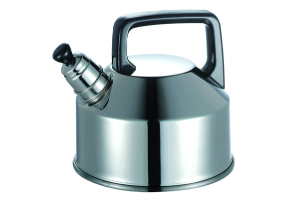 Stainless Steel Heavy Base Kettle