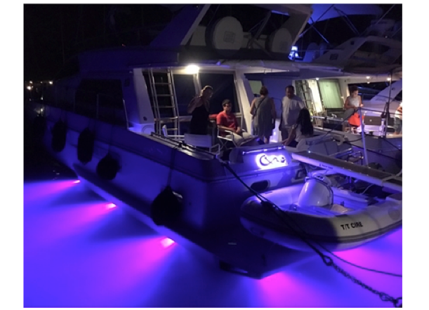 Bluefin Piranha P12 P12 Dual Colour Mk 11 Surface Mounted Led Underwater Boat Light 12v 4 Colours