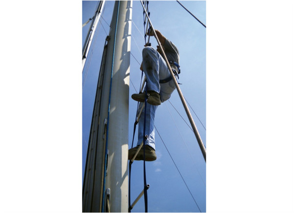 Anti-Torsion Ladder for Mast Climbing - 4 Sizes