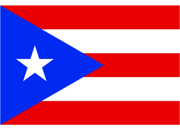 Puerto Rica Courtesy Flag  Polyester 45 x 30cm