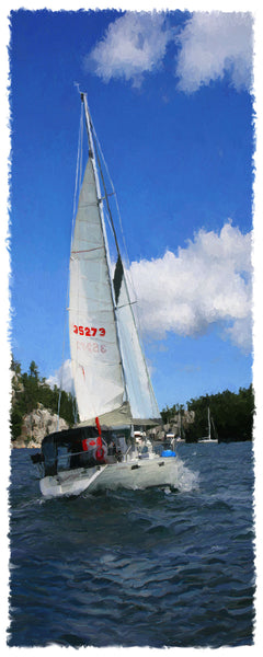 204 Downbeat Sailboat