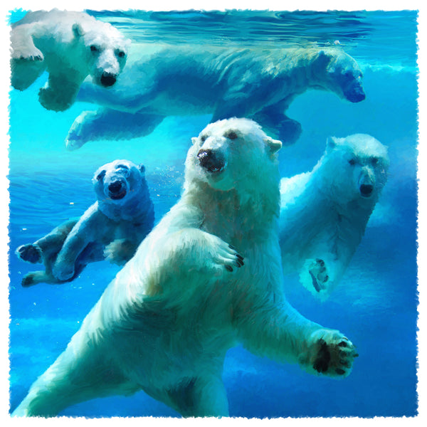 .01 - Water Ballet: Polar Bears