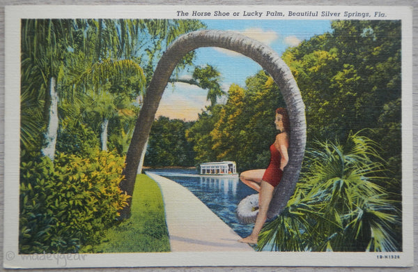 The Horse Shoe or Lucky Palm, Silver Springs FL