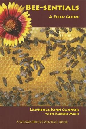 Bee-sentials- A Field Guide