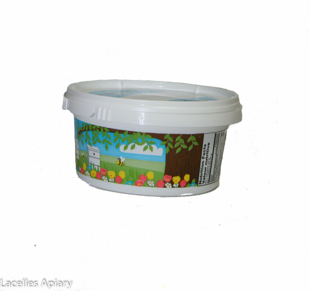 Plastic Container-Painted-500gr.