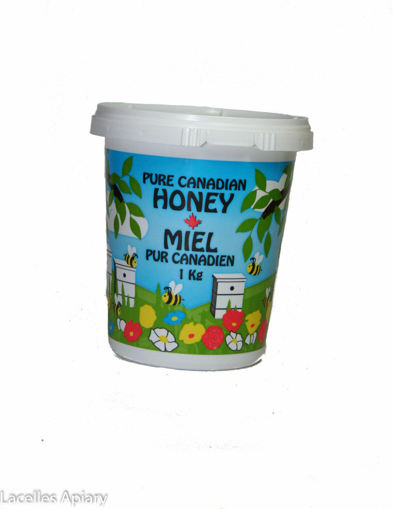 Painted Plastic Container- 1 Kilo