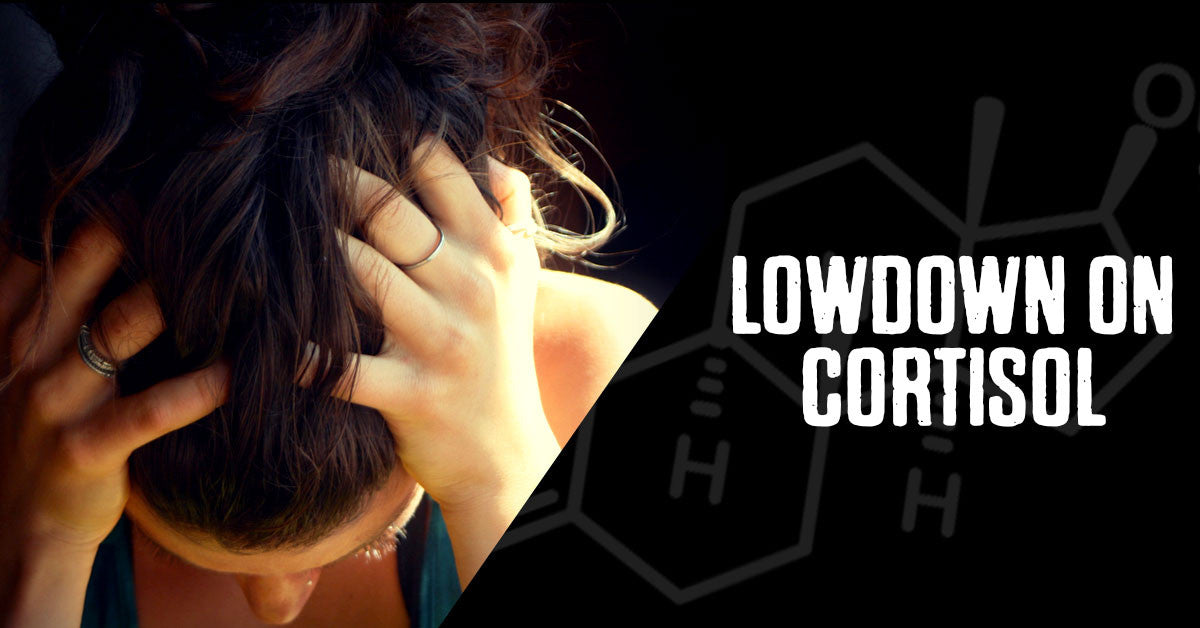 The Lowdown on Cortisol