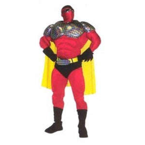 Super Hero Mascot Costume